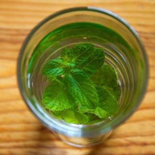 شاي النعناع يوازن الهرمونات