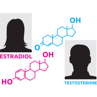 الفروق الهرمونية