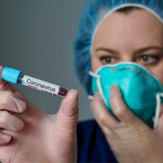 ما هي فيروسات الكورونا؟