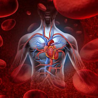 انخفاض احتمالية الإصابة بأمراض القلب التاجية