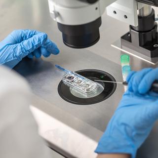 الإخصاب في المختبر