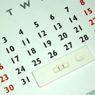 أسابيع الشهر الخامس من الحمل