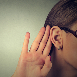 وظائف غضروف الأذن