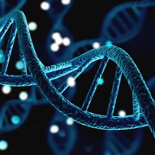 شاهدوا بالصور: كيف تتوارث الأمراض الوراثية؟