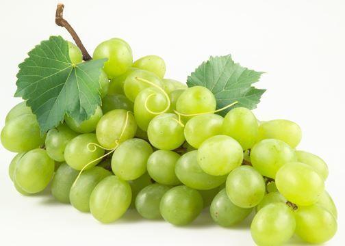 قناع العنب