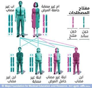 نمط وراثي متعلق بكروموزوم X مع أم حاملة