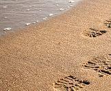 رياضة المشي : كيف نختار المسار الصحيح؟