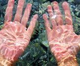 غسل اليدين : المسموح والممنوع!