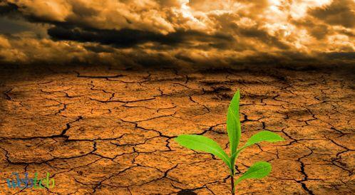 التغير المناخي ومشكلة الأمن الغذائي