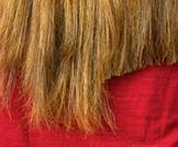 علاج الشعر التالف: اليك اهم النصائح