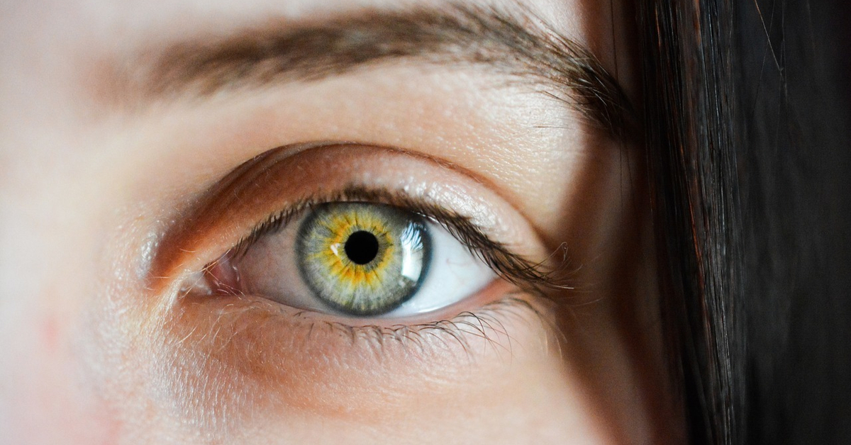 ذبابة العين الطائرة عوامات العين أهم المعلومات ويب طب