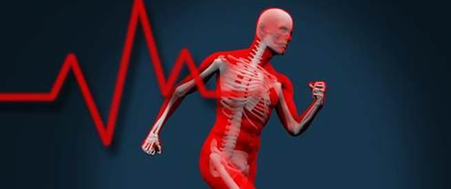حقائق مفاجئة حول صحة العظام!