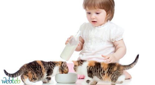 هل من المفضل ابعاد الأطفال عن تربية القطط؟