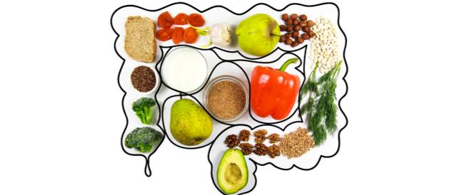 التغذية الامثل لصحة جهازك الهضمي