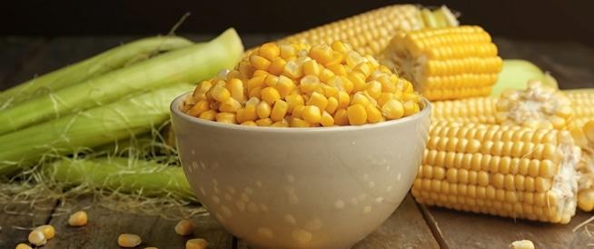 فوائد الذرة الصفراء: قائمة بأهمها!