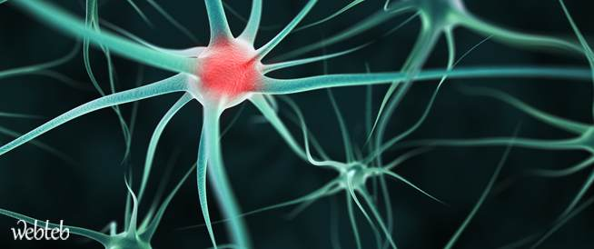 أورام الغدد الصماء العصبية - كافة المعلومات