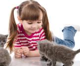 تربية القطط قد تصيب طفلك بالغباء!