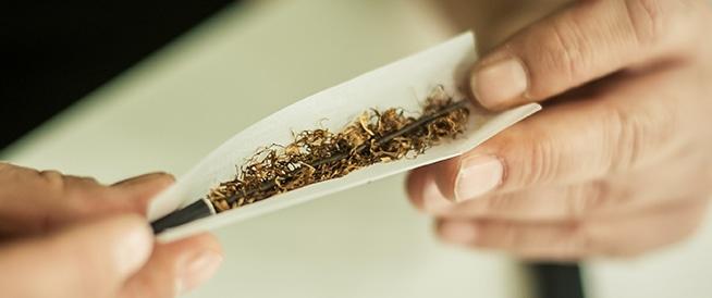 حقائق حول مخدر الحشيش
