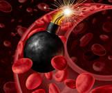 دورة الدم وضغط الدم