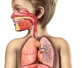 الامراض التنفسية الشائعة عند الاطفال