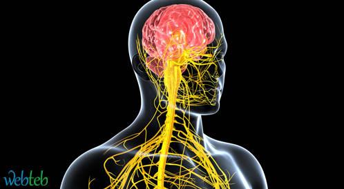 طرق وقاية مرضى السكري من تضرر الجهاز العصبي