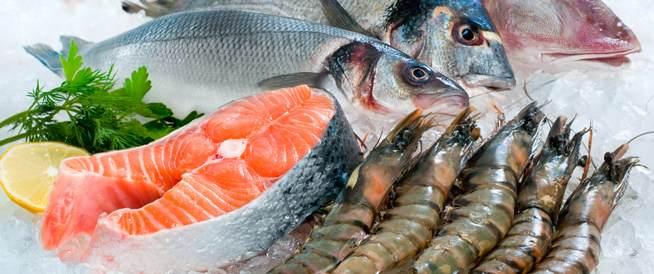 الأسماك والمحار كيف أمنع تلوثها