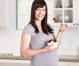 الزنك والحديد للحامل