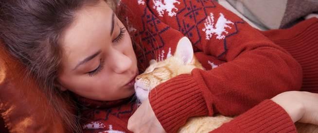 القطط والعقم- هل هي حقيقة؟