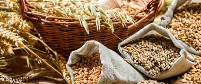 الحبوب الكاملة: خيارات النظام الغذائي الصحي للقلب