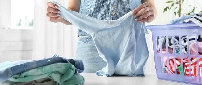 عث الملابس - هذا ما تحتاجين معرفته!