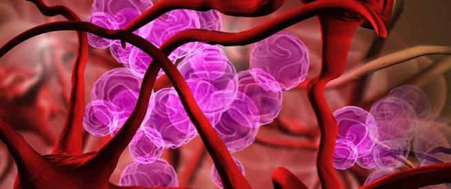 أهم المعلومات حول علاج فقر الدم