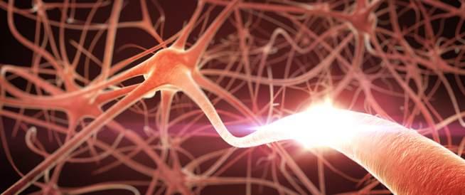 اعتلال الأعصاب- معلومات ونصائح هامة