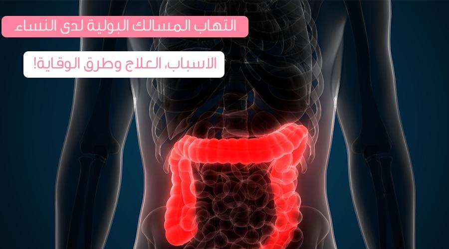 التهاب المسالك البولية لدى النساء ويب طب