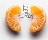 سرطان الرئة والغذاء