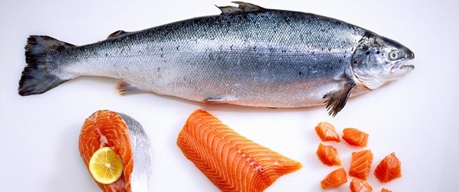 10 فوائد صحية لسمك السلمون: تعرف عليها