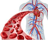 زيادة كريات الدم الحمراء