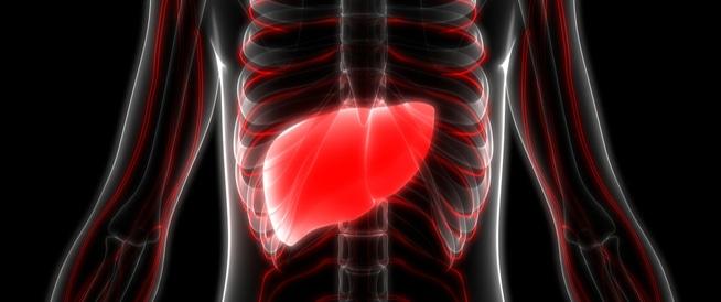 أكياس في الكبد؟ قد تكون مصاباً دون أن تدرك ذلك!