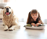 الحيوانات الأليفة والاطفال