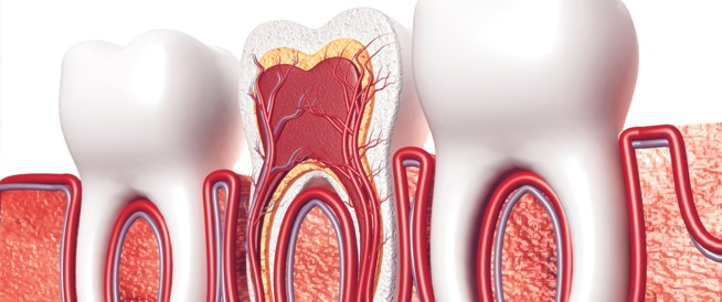 الأسئلة الشائعة حول علاج قناة الجذر