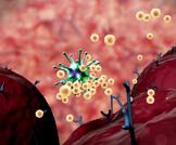 جهاز المناعة