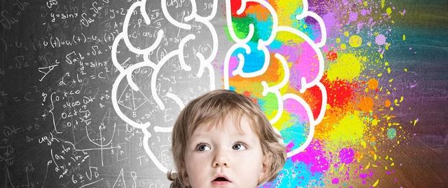 تطور دماغ الطفل مرحلة بمرحلة
