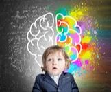 تطور الدماغ