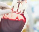 فصائل الدم: أنواعها وخصائصها