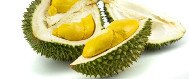 فاكهة الدوريان: فوائد مذهلة رغم الرائحة الكريهة!