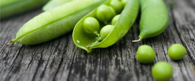 مصادر البروتينات النباتية: قائمة بأهمها!
