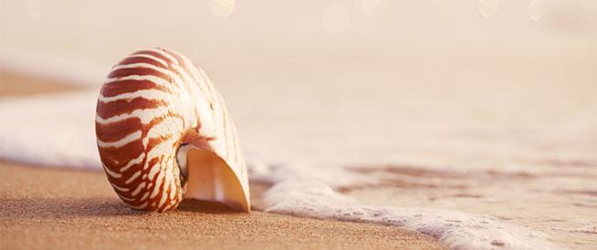 تأثيرات أشعة الشمس على الجسم