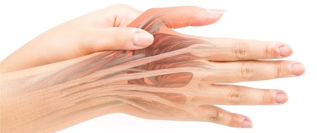 تمزق العضلات: أهم الأسباب والعلاجات