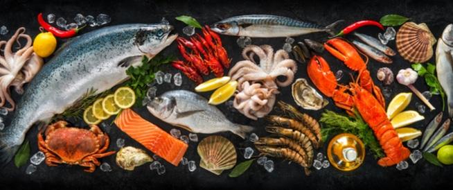 تعرف على أفضل المأكولات البحرية حول العالم وفوائدها