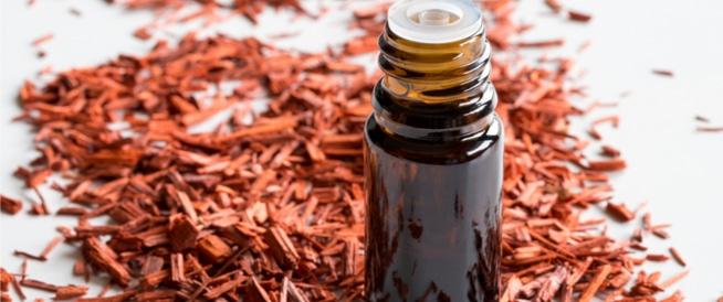 خشب الصندل ومشتقاته: فوائد جمالية مذهلة!