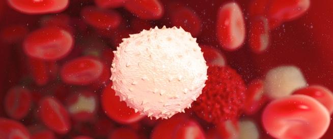 كريات الدم البيضاء: بين النقص والارتفاع